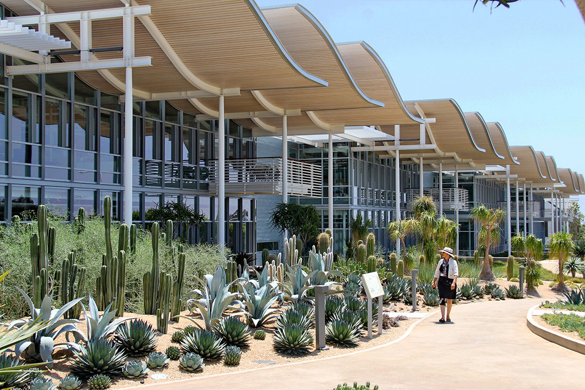 Desert Garden with more than 40 species of drought-tolerant plants from California and around the world